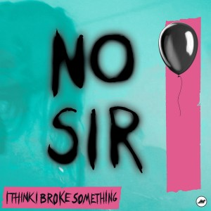 I Think I Broke Something - No Sir